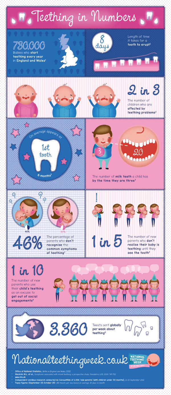 Baby teething infographic